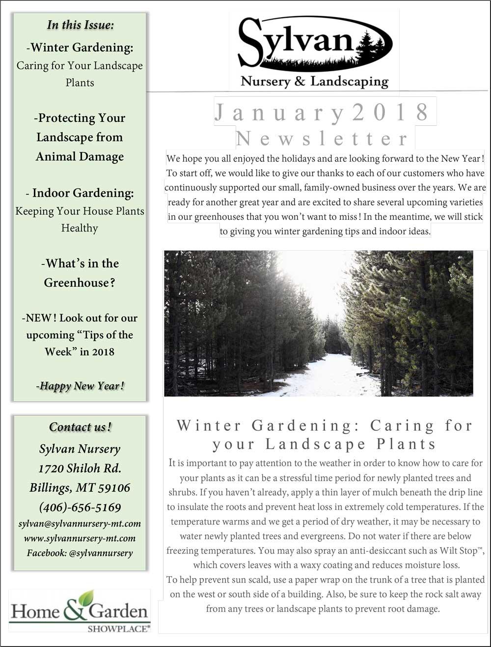 Newsletter Sylvan Nursery